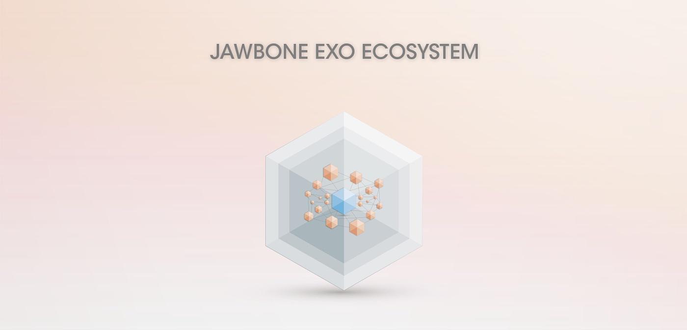 Jawbone EXO Ecosystem by Fabio Besti - final