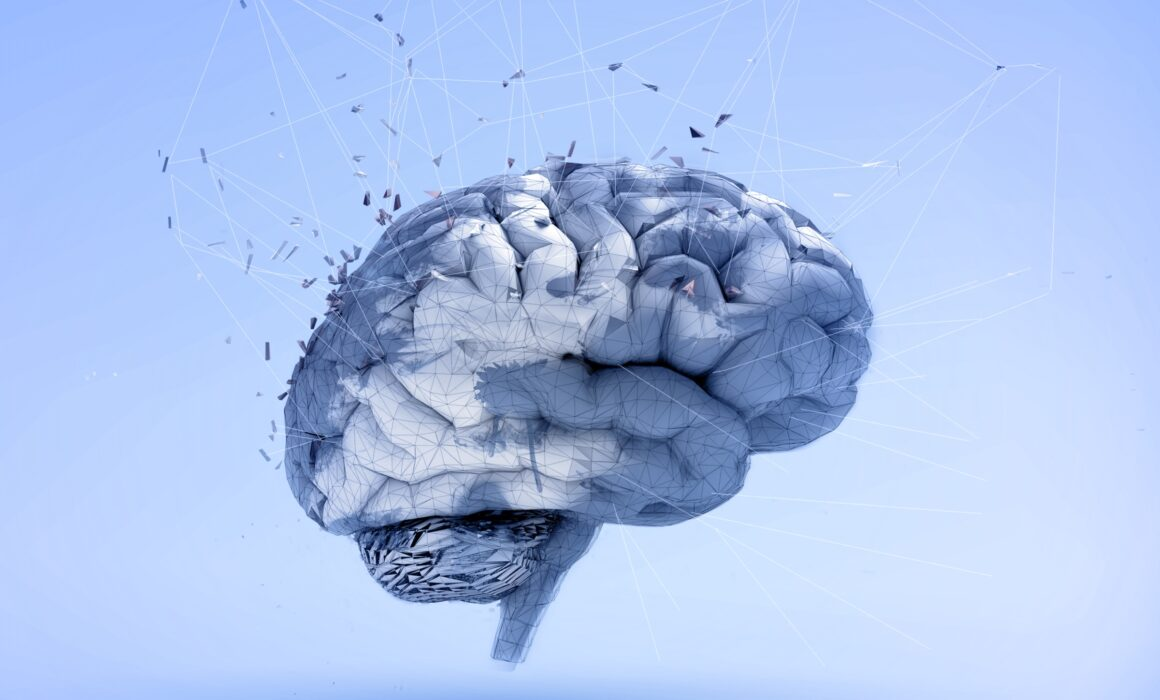 Design, psychology and the brain: a new research field